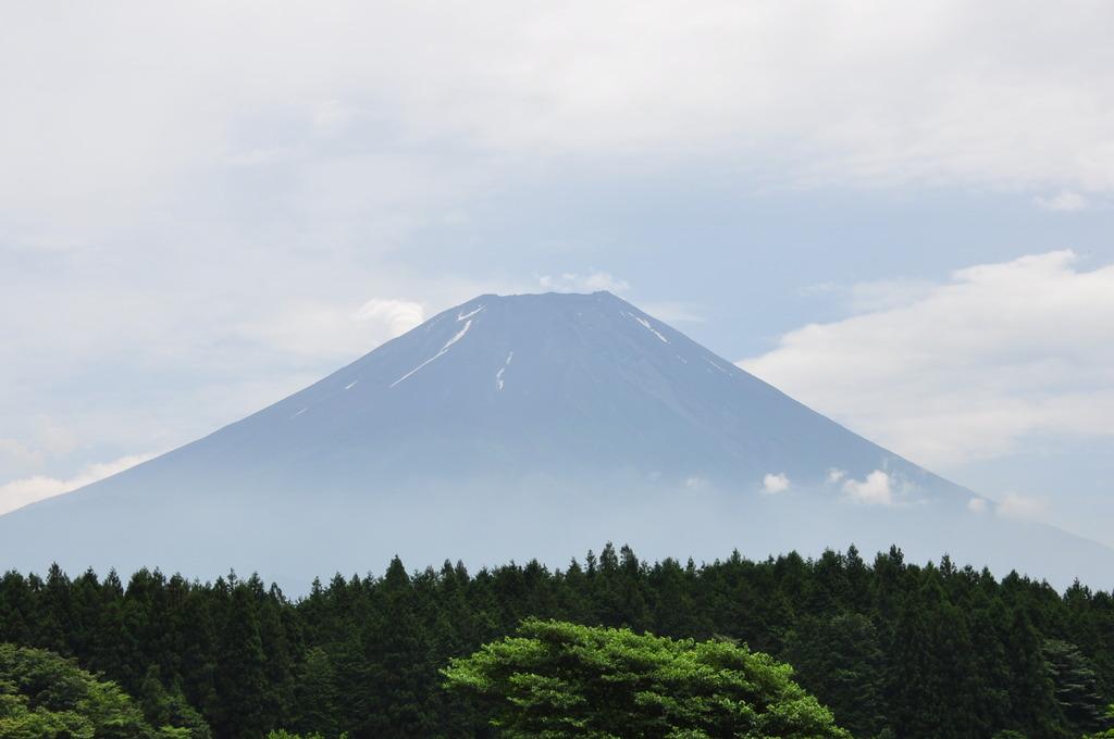 まだ静岡は梅雨明けしないのかなぁ・・・