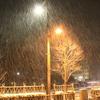 富山出張は大雪