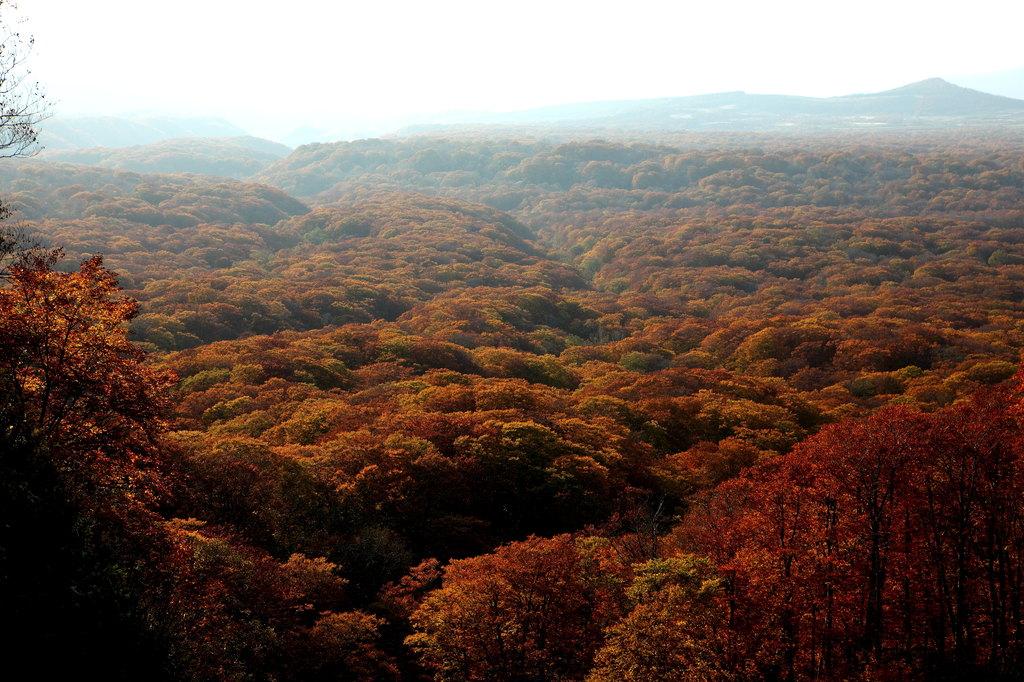 十和田湖外輪山から