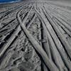 美しかった砂浜。