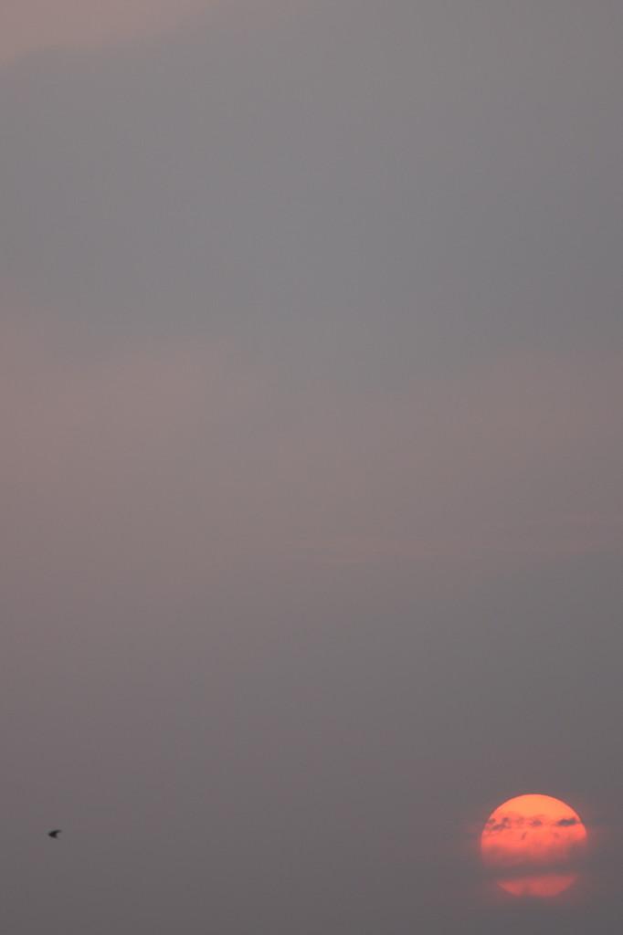 梅雨の晴れ間の夕日