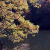 妙義湖の秋2