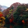 もみじまつり2009~永源寺
