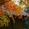 漢陽寺の紅葉