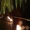 竹林の灯篭