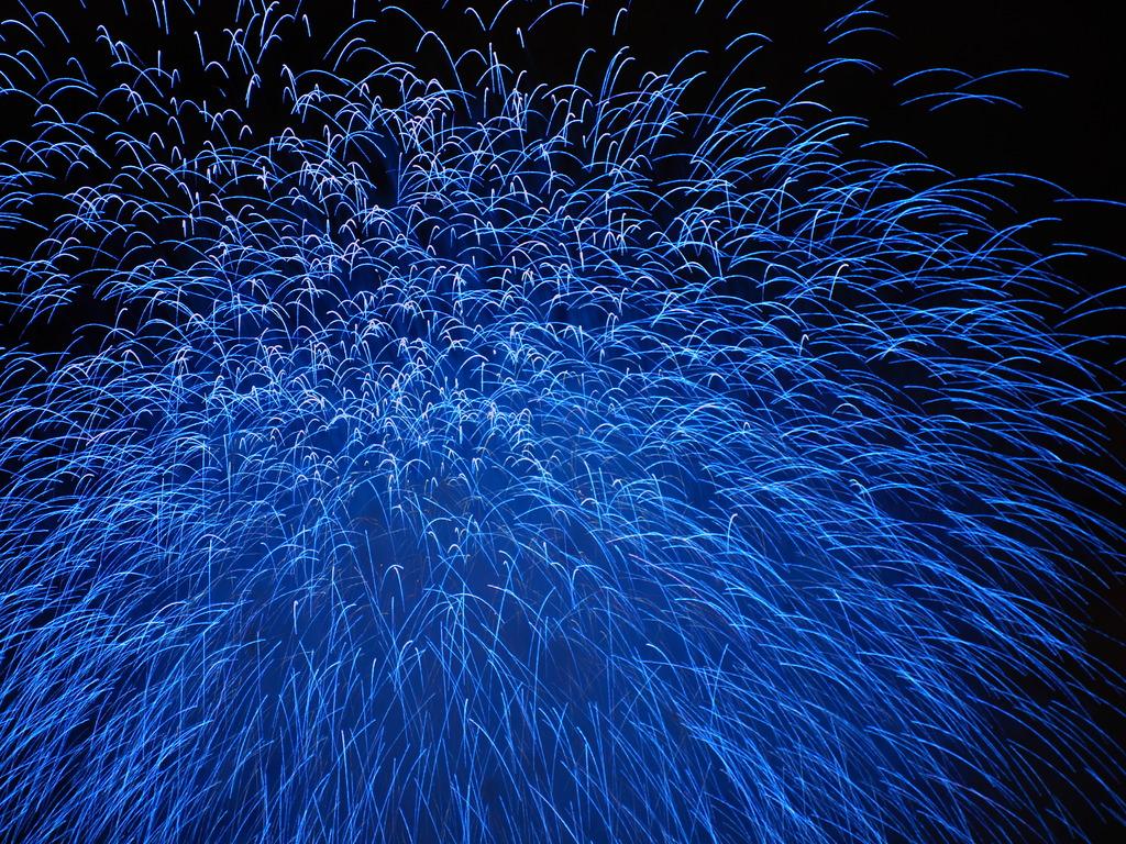 夏夜の青線花