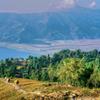 ネパール サランコット 藁を運ぶオバサン
