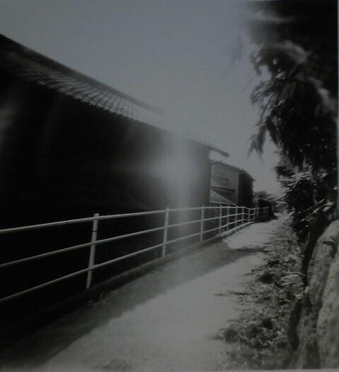 光の路   (ホルガ)