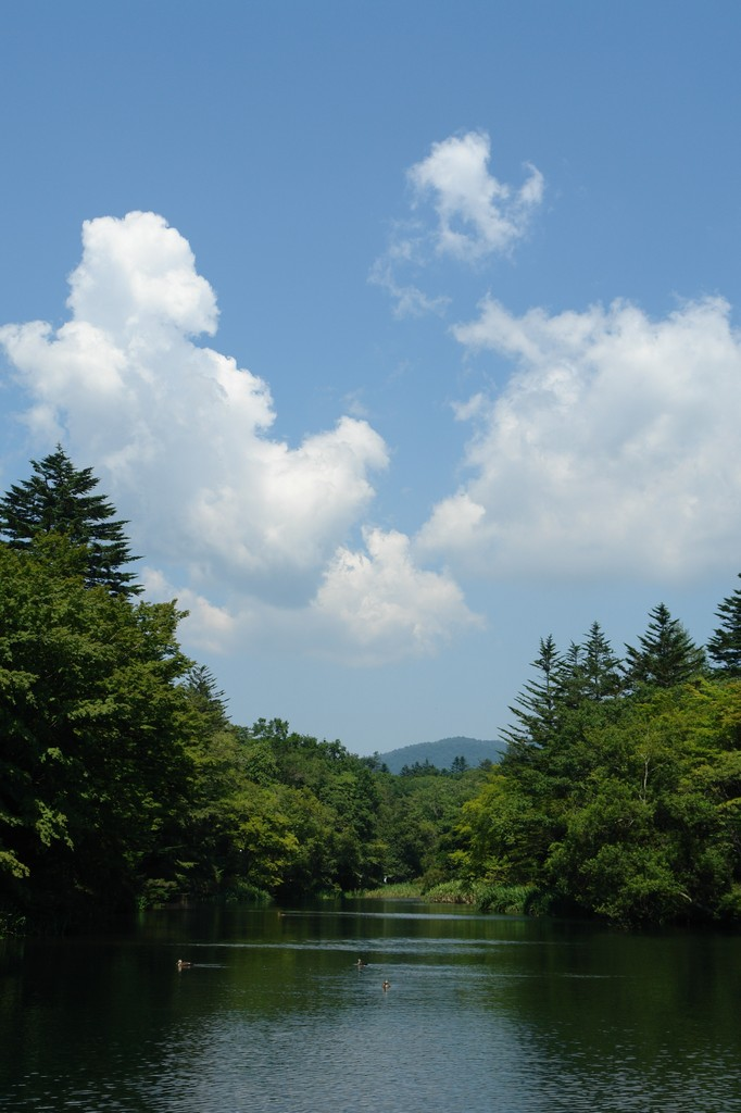 雲場池 軽井沢の休日