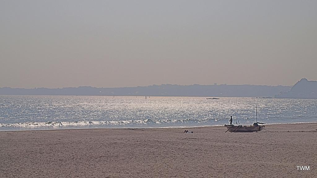 PA311601