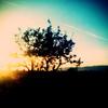 Sunset, Lancaster
