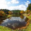 秋の段戸湖