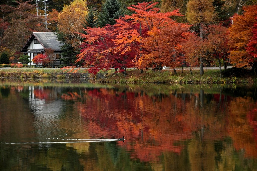 tateshina lake04
