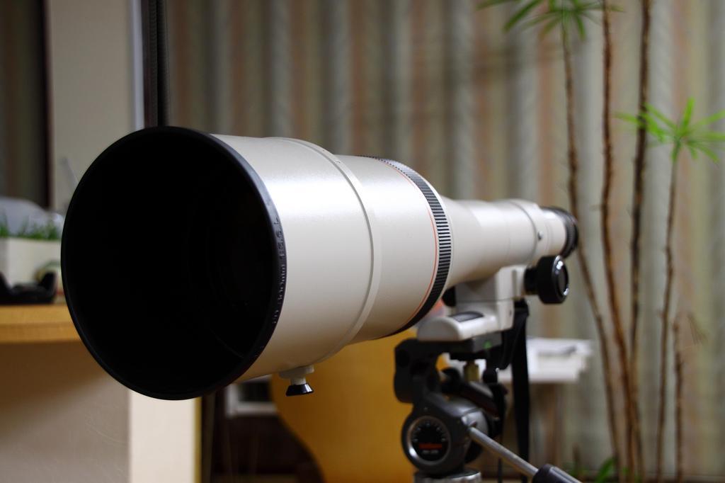 canon 800 mm sugoiiiiiiiii