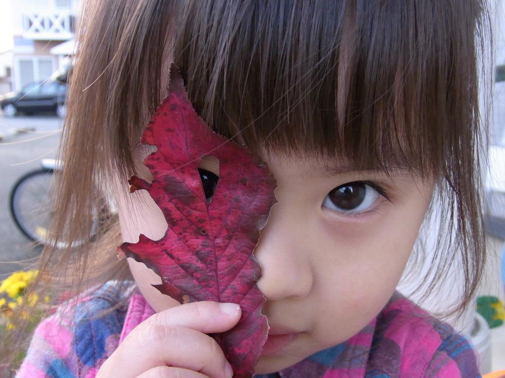 小さい秋みーっけ!!