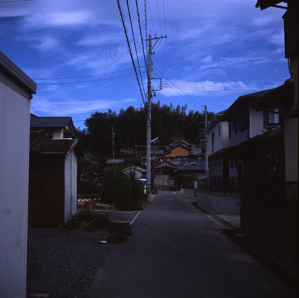 裏山への散歩道