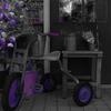魔女の三輪車
