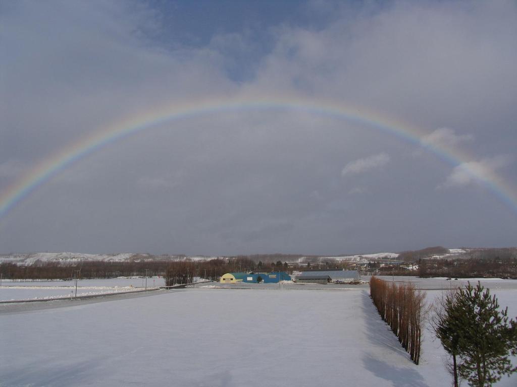 雪景色に現れた虹