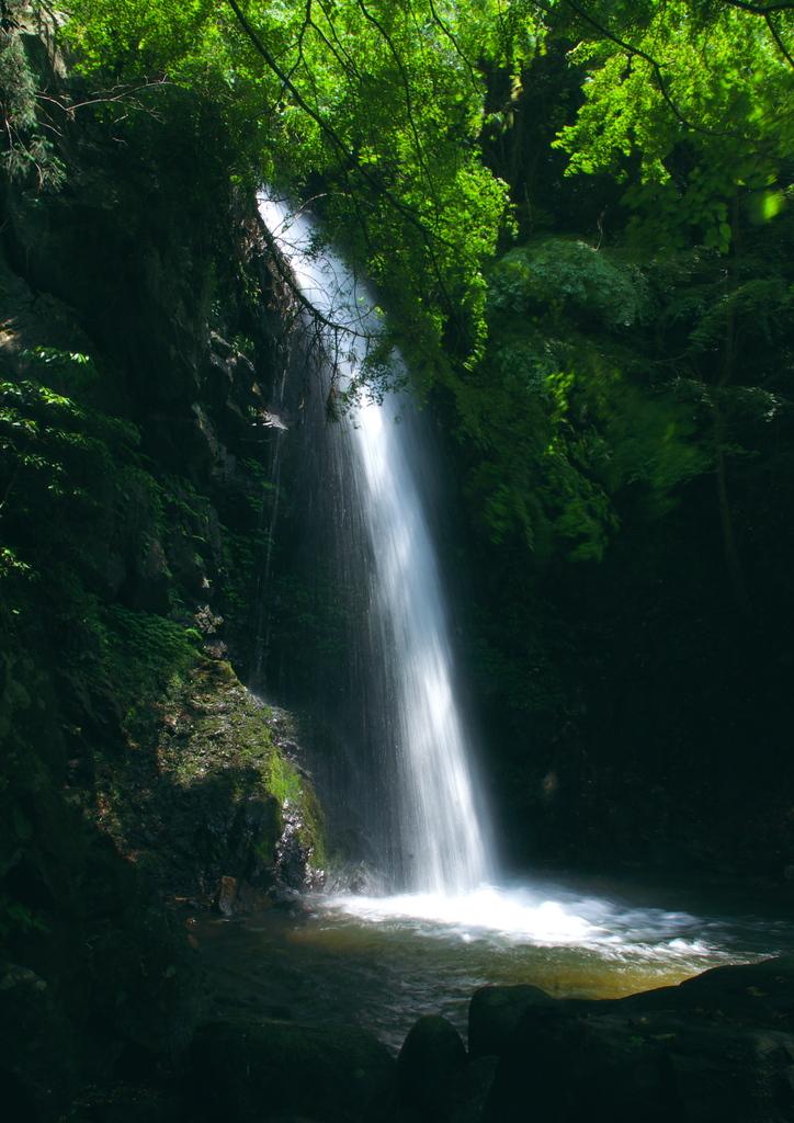 白藤の滝(三重県)