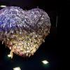 愛のオブジェ『LOVERS』