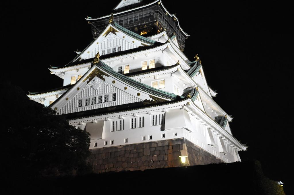 夜景~大阪城