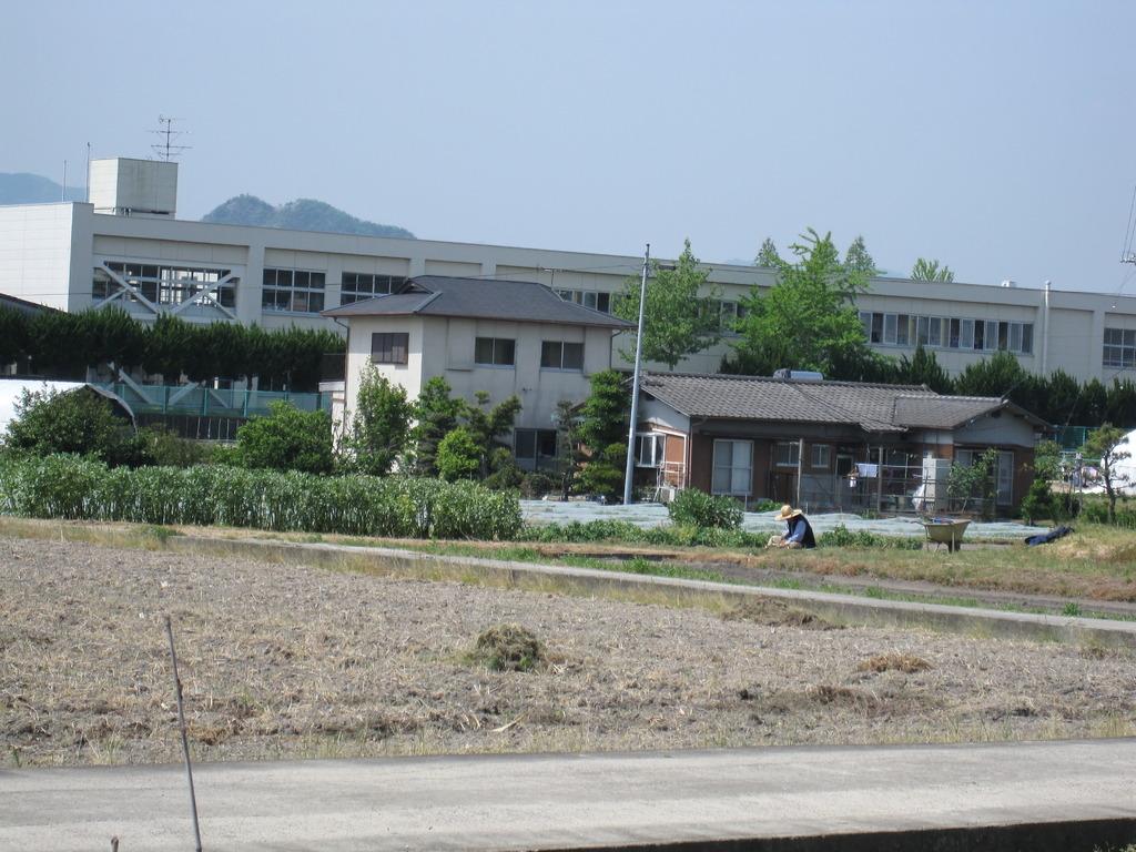 夏休みの学校