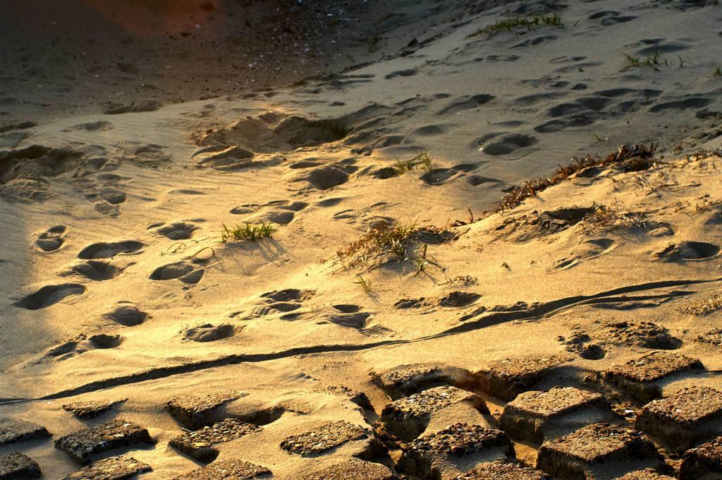遊び疲れた砂浜