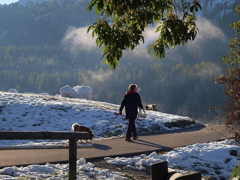 朝靄の中の散歩
