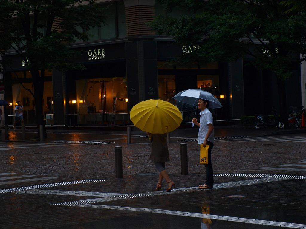 雨も、また愉しからずや