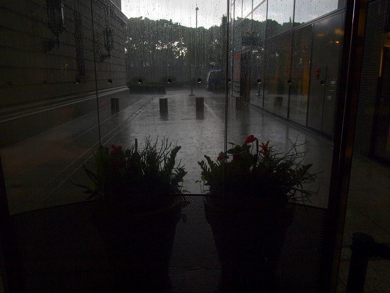 夕立(俄か雨)