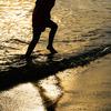 水辺の喜び