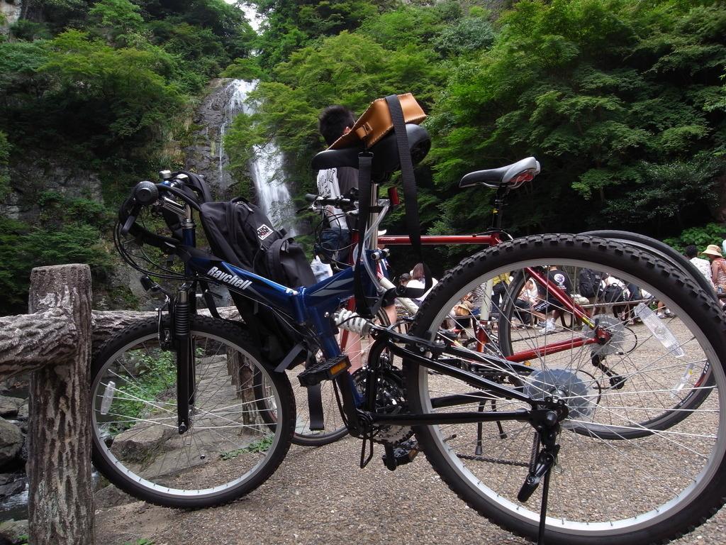 相棒 with 滝