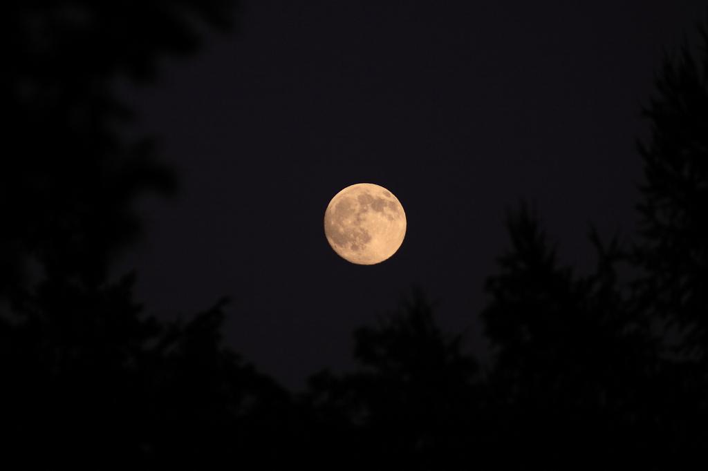 月 その1