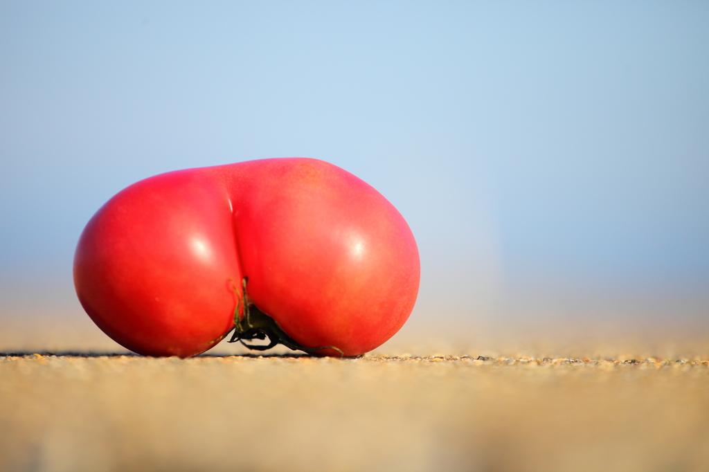 エッチなトマト