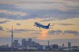 東京の空を往く