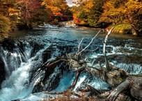 奥日光・龍頭の滝より少し上流にある名もなき小さな滝2