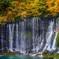 紅葉の富士宮・白糸の滝