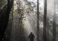 OLYMPUS E-M5MarkIIで撮影した(光芒より出づる人)の写真(画像)