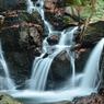 兵庫県三田市 尼ん滝