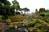 吉城園 日本庭園