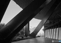 SONY ILCE-7M2で撮影した(ハシラのチカラ)の写真(画像)