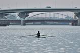 浜寺運河にて(3)