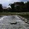 亀石の飛び石(1)