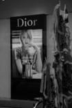 Dior と鯉のぼり