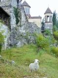 神の子羊と修道院 Agnus Dei & Monastery