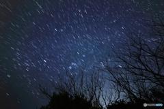 去りゆく冬の星座
