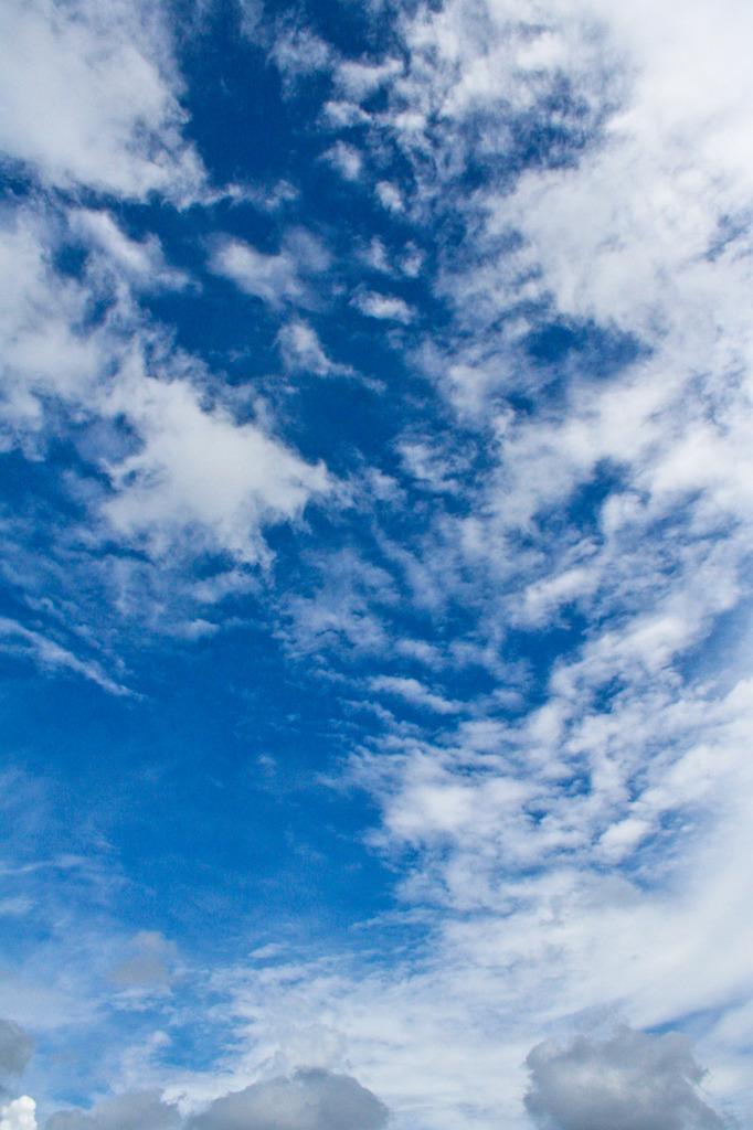 一日の天候(昼間)