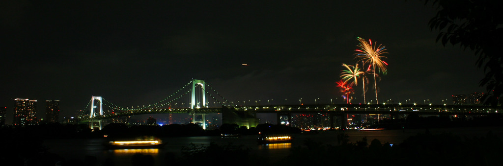 2009東京湾大華花火大会