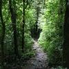 Trail, Costa Rica