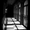 学び舎の影